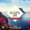 Lost Frequencies feat. Sandro Cavazza - Beautiful Life (Erick Morillo Remix) [OUT NOW]