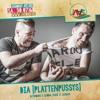 DIA-Plattenpussys Live @ JAAS 2016 mp3