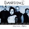 Evanescence - Farther Away (Joako Fargo edit)