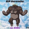 Lil Boom - Dicks Out For Harambe (Tribute Song RIP)