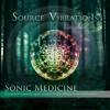 Source Vibrations - Sonic Medicine - 08 Oceanic Resonance