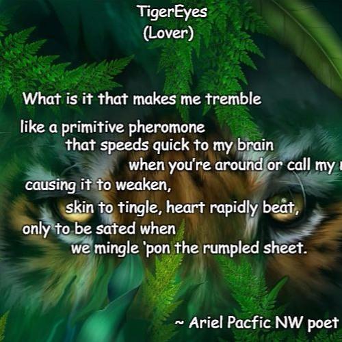 TigerEyes (Lover)