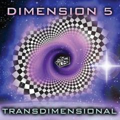 Dimension 5 - Purple Om (Vinyl)