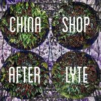 AFTERLYTE - China Shop