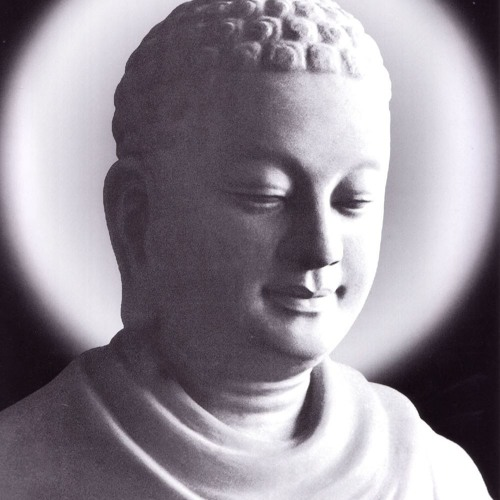 Kinh Potthapada  - Sư Toại Khanh