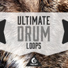 Download Ultimate Drum Loops [600+ Drum Samples / Loops + Construction Kits] Mp3