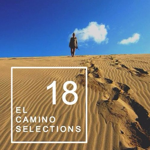 AYES COLD X EL CAMINO TRAVEL // SELECTIONS CONTINUED 18