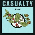 Pional Casualty Artwork