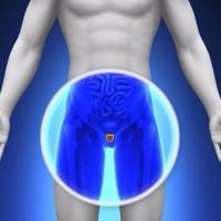 Cover mp3 Prostata