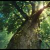 Cecile Corbel - The Neglected Garden The Borrower Arrietty