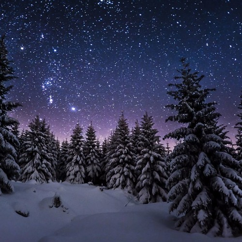Gute Nacht - (Franz Schubert)