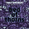 Bed Of Thorns (Stickerbrush Symphony / Forest Interlude Cover)