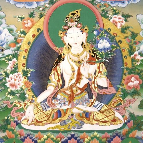 Wut und Geduld gemäß Buddhismus
