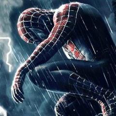 Spiderman-  B - Wine