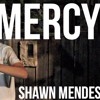 poster of Shawn Mendes Mercy song