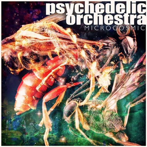 Psychedelic Orchestra - Chaplin's Dub (clip)