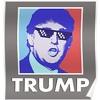 Vote For Trump Prank
