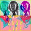 Zara Larsson - Lush Life (S3RVO Remix)FREE 'WAV' DOWNLOAD ! ! ! !