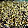 Fenerbahçe Cumhuriyeti  V2 mp3