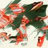 Cabu & Akacia - Gold (4AM Remix)