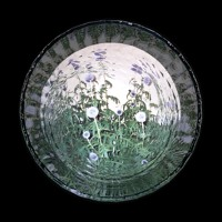 Sekuoia - Brace (Ft. Marc Roland)