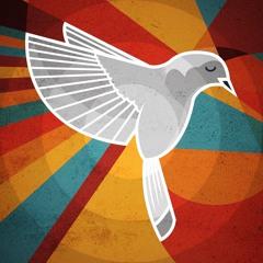 Liberate ft. Lateefah (prod. Ian Green)