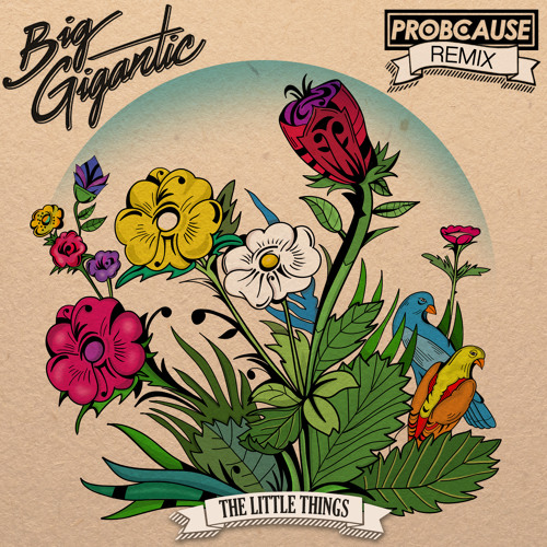 Big Gigantic - Little Things (ProbCause Remix)