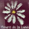Download Fleurs De La Lune Mp3