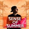 Sense Of Summer Mixtape Part 2 by SonicNoise