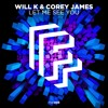 WILL K & Corey James - Let Me See You