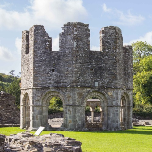 15 Old Mellifont Abbey - Discover Boyne Valley