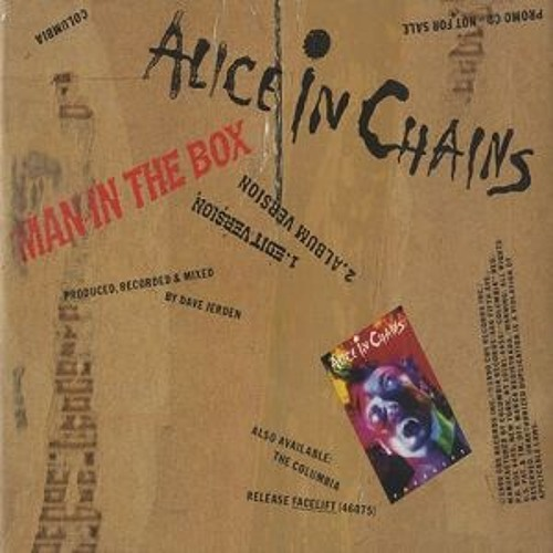 Alice in Chains - Man In The Box (Cover)