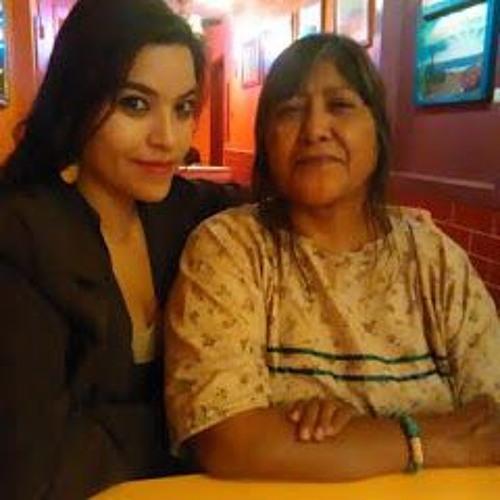 Standing Rock Resistance Radio Dine' Michelle Cook