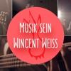 Musik Sein - Wincent Weiß (Cover)