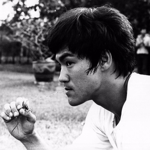 Bruce Lee's philosophy of learning, read by his daughter