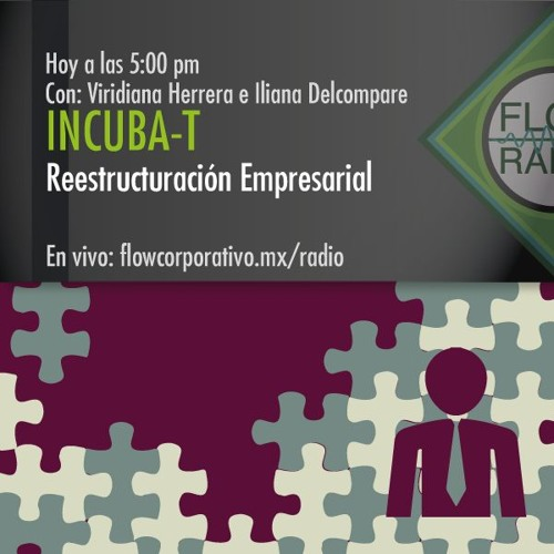 IncubaT 037 - Reestructuración Empresarial
