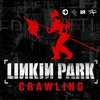 Ruan C. Elias - Crawling ( Acoustic Version )( Linkin Park Cover )