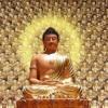[Khai Thị 0002]Vì Sao Niệm Câu -A Di Đà Phật- Lại An Vui Như Vậy.