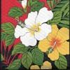 Hawaiiana Tape 2 - B - Side - Hawaiian Souvenirs