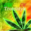 Who Knows - Tromatyk (EP-Sensory) Beatfreak'z Record mp3