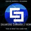 Calvin Harris feat Rihanna - This Is What You Came For (Salvo Carrara Remix) [FUTURE HOUSE]