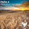 Fields Of Joy (Nikolauss #140 Remix)