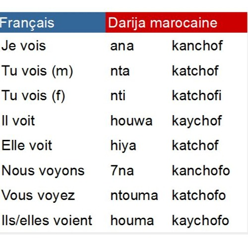 Conjugaison Du Verbe Voir Chaf Au Present En Darija Marocaine By Darija Marocaine