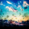 F.ver under a nitght sky