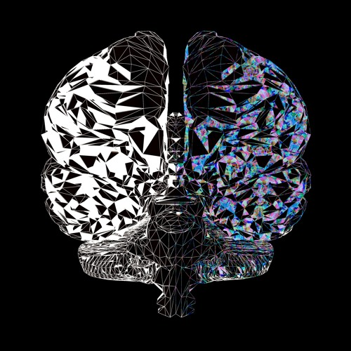 Dual-Brained²