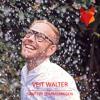 Veit Walter - Sanfter Sommerregen (PREVIEW)