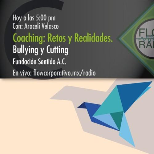 Coaching: Retos y Realidades 021 - Bullying y Cutting, Fundación Sentido A.C.