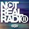 Not Real Radio Episode 31 ∙ Drama Squad