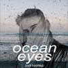 Ocean Eyes (pyb bootleg)