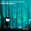 Thomas White & Ryan Playground - Drunk Mind, Sober